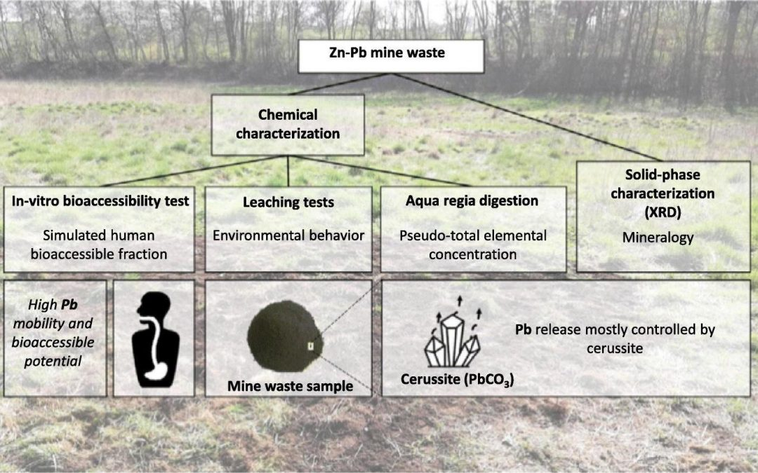 Trace elements leaching from Pb-Zn mine waste (Plombières) & environmental implications