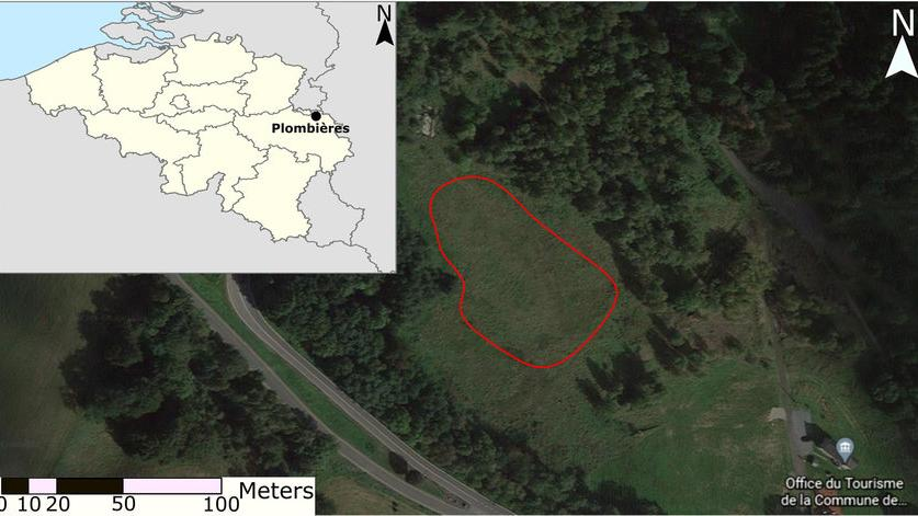 Can historic Zn–Pb mine waste (Plombières, Belgium) be a source of valuable metals?